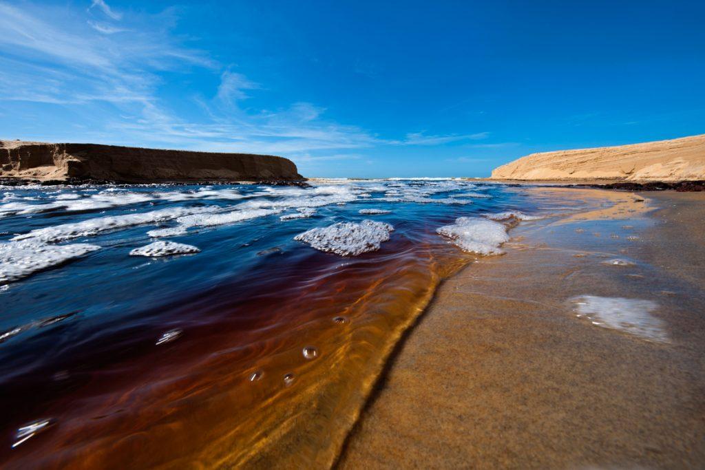Conheça os 7,4 mil km de belezas naturais do litoral brasileiro: Conceição da Barra - Itaúnas (ES)
