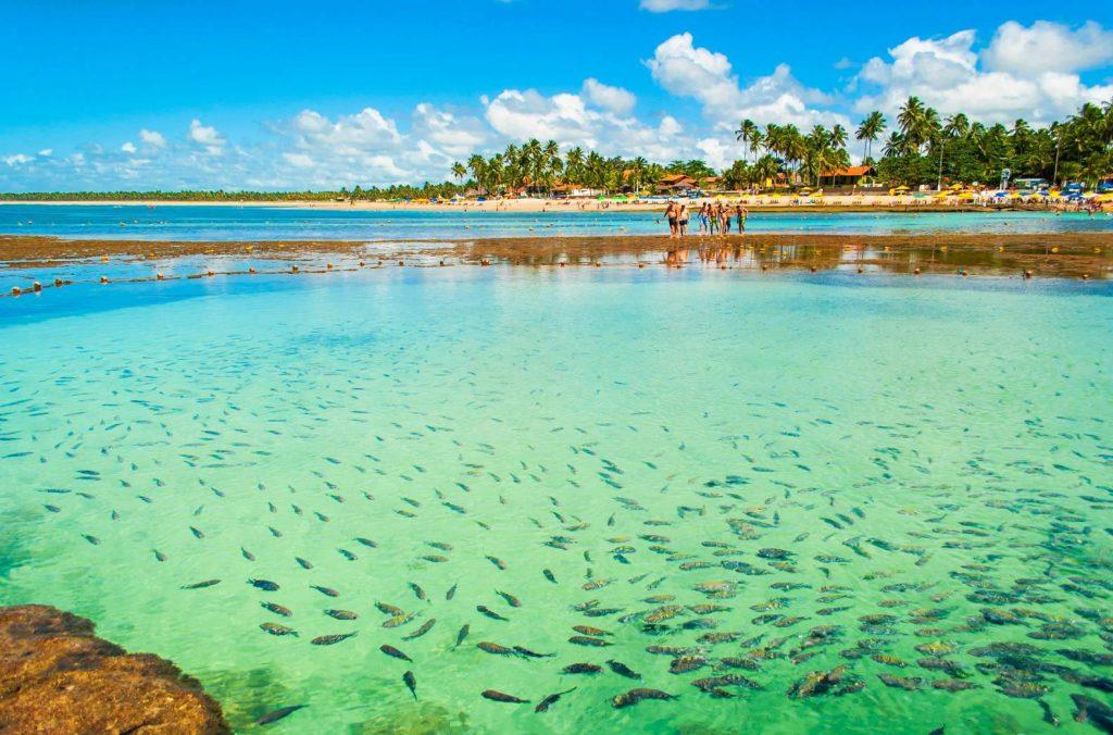 As 10 Praias Mais Bonitas do Brasil - Porto de Galinhas (PE)