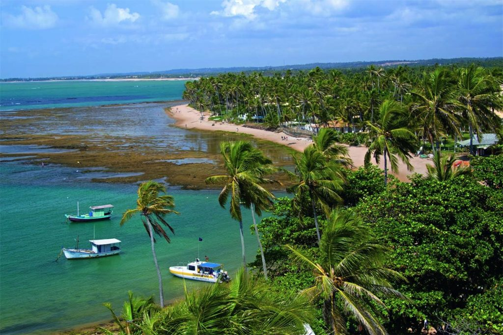 As 10 Praias Mais Bonitas do Brasil - Praia do Forte (BA)