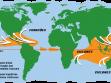 Furacões, ciclones e tufões são denominações dadas aos ventos ciclônicos, conforme a região do planeta em que ocorrem.  Fonte: Costa, J. R. V. Galáxias e furacões. Astronomia no Zênite, abr 2015. Disponível em: http://www.zenite.nu/galaxias-e-furacoes/