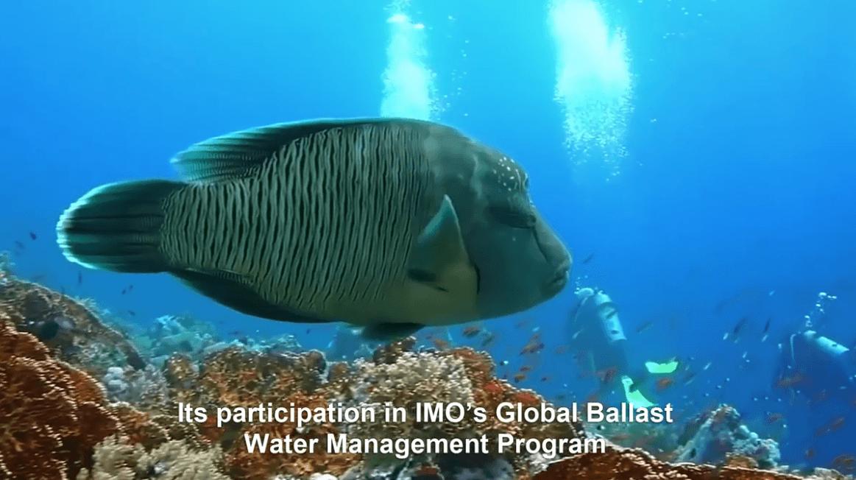 O Brasil participa do Programa Global de Gerenciamento de Água de Lastro da IMO