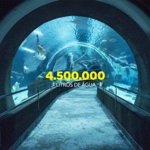 VemProAquaRio_AquaRio_4.500.000