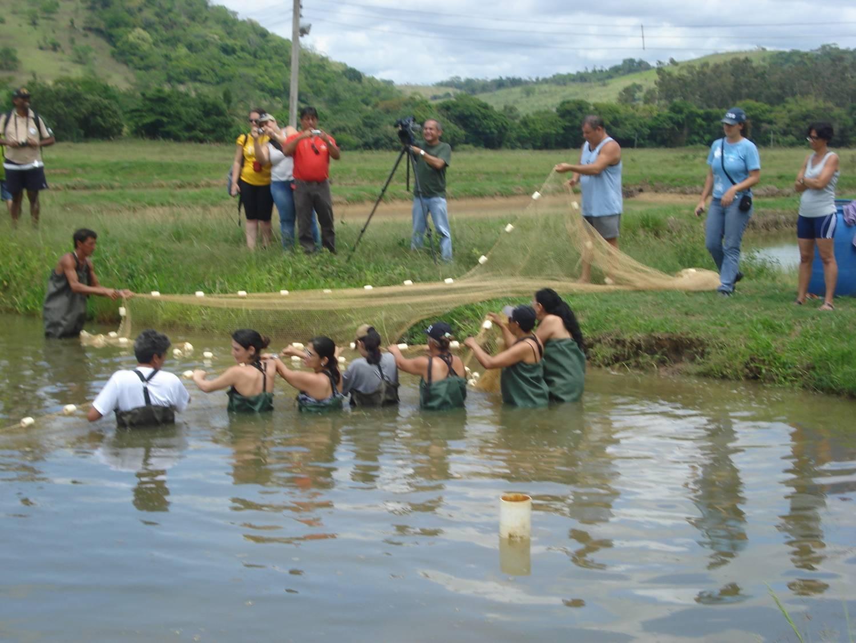 Aula pratica do Projeto Piabanha, talvez a unica instituição nacional cujo trabalho associa a genética à ecologia de peixes.