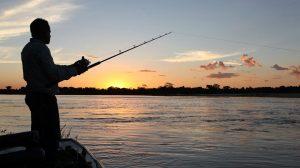 Notícias sobre pesca amadora